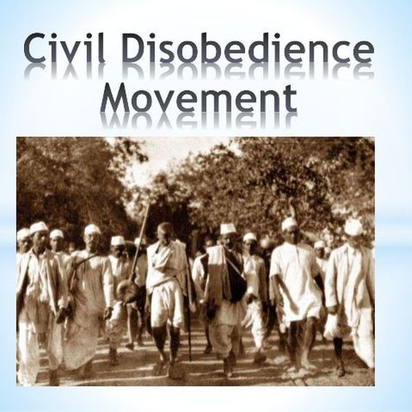 Civil Disobedience Movement Essay Examples