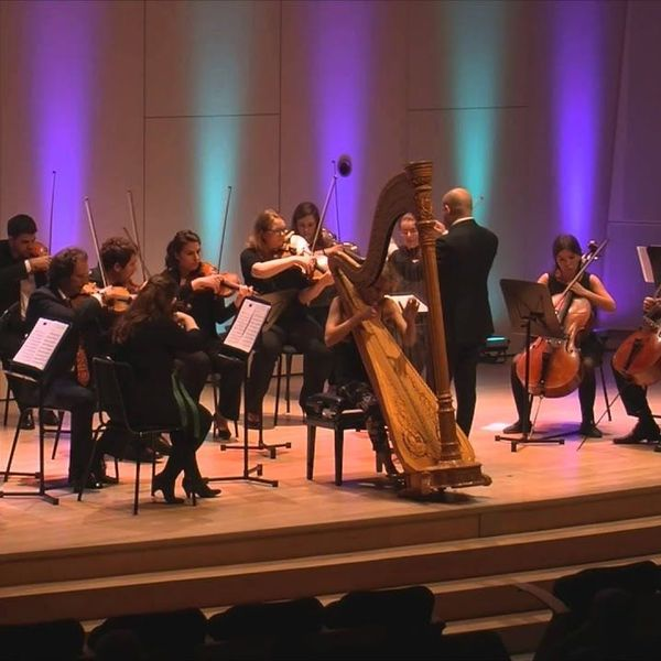 Classical Music Concert Essay Examples