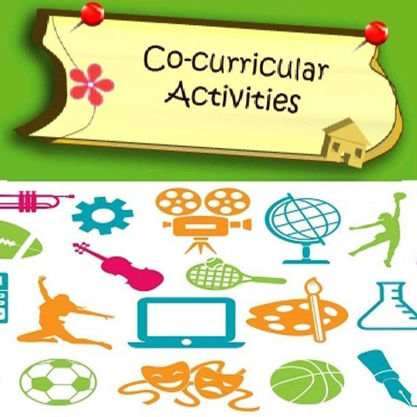 Co Curricular Activities In School Essay Examples