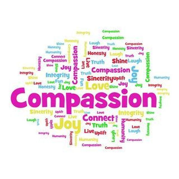 Compassion Essay Examples