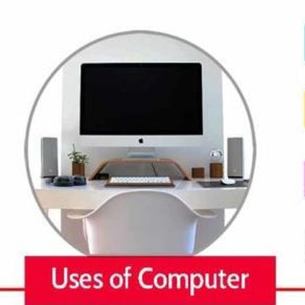Computer And Its Applications Essay Examples
