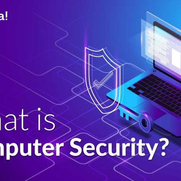 Computer security Essay Examples