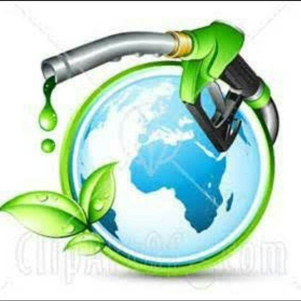 Conservation Of Fuel Essay Examples