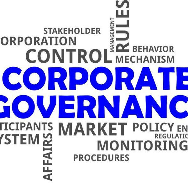 Corporate governance Essay Examples
