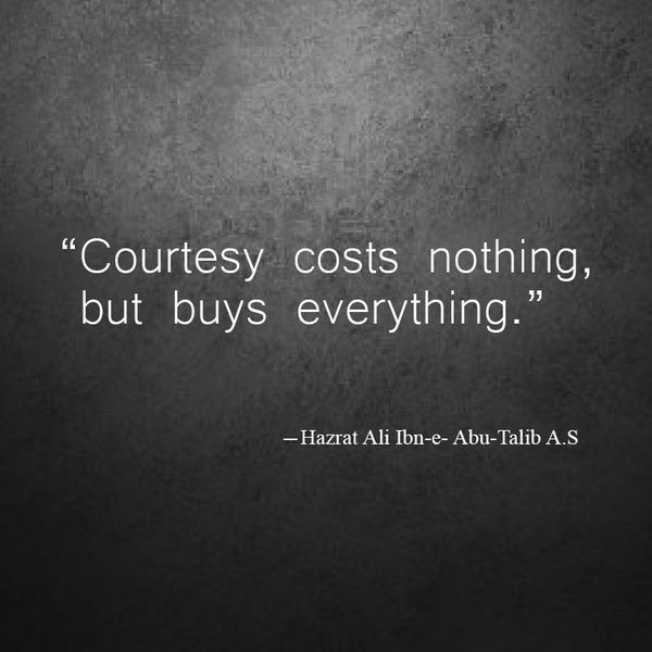 Courtesy Costs Nothing Essay Examples