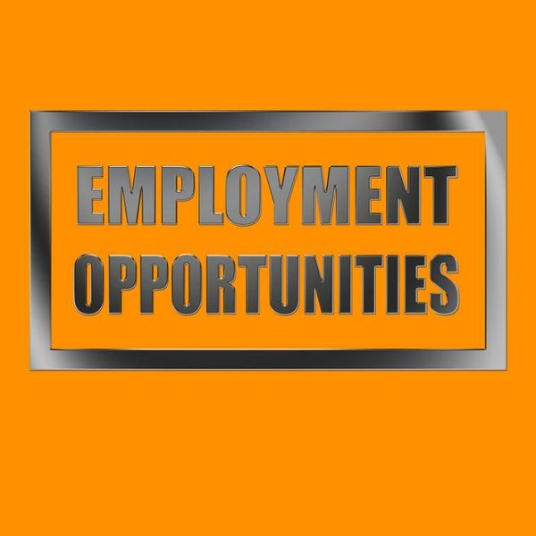 Creating Employment Opportunities Essay Examples