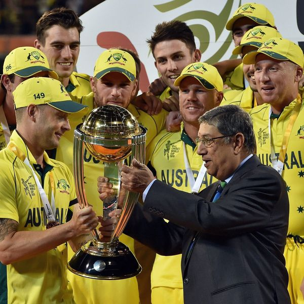Cricket World Cup 2015 Essay Examples