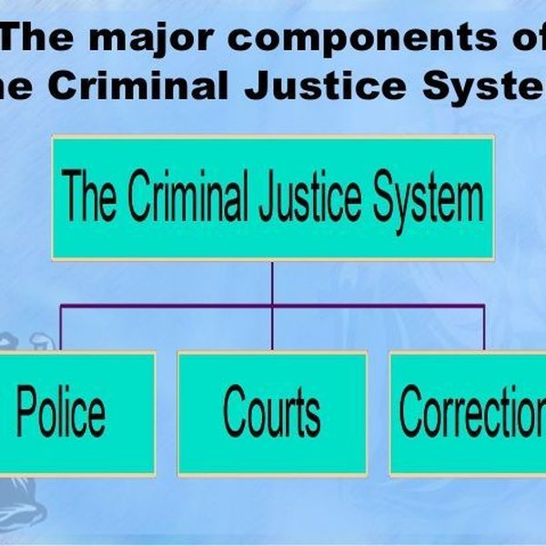 Criminal Justice System Essay Examples