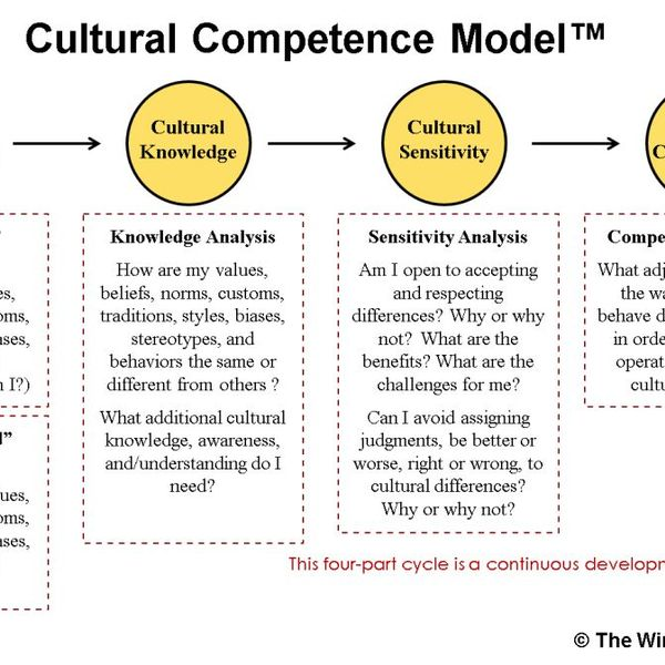 Cultural Competence Essay Examples