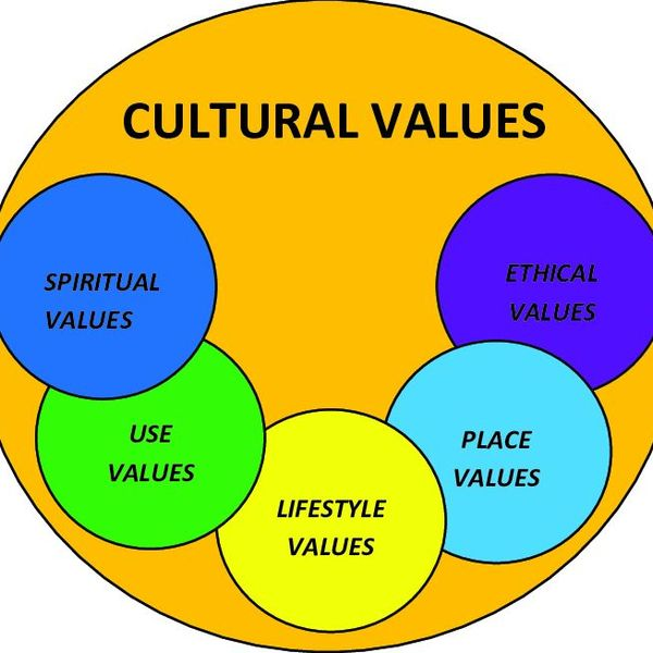 Cultural Values Essay Examples