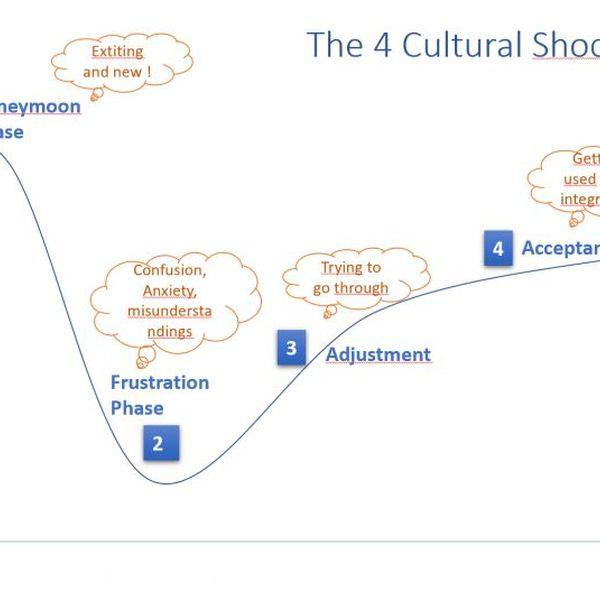 Culture Shock Essay Examples