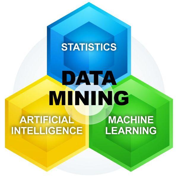 Data Mining Essay Examples