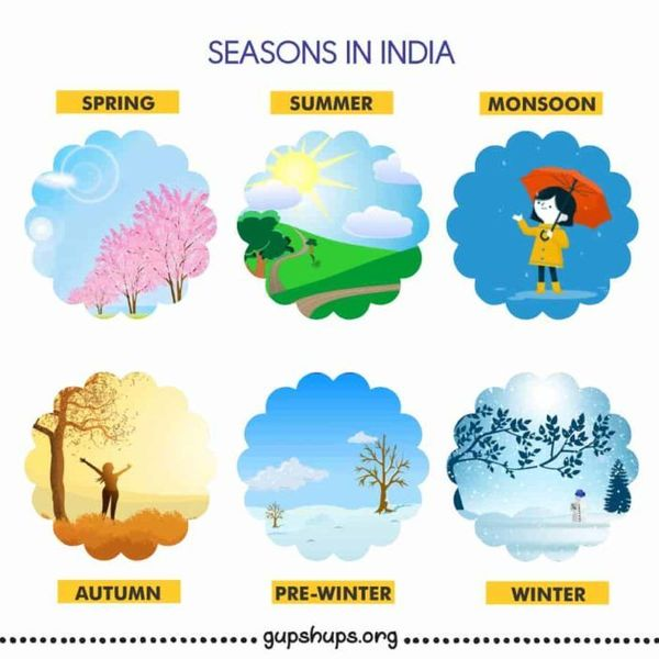 Different Seasons In India Essay Examples