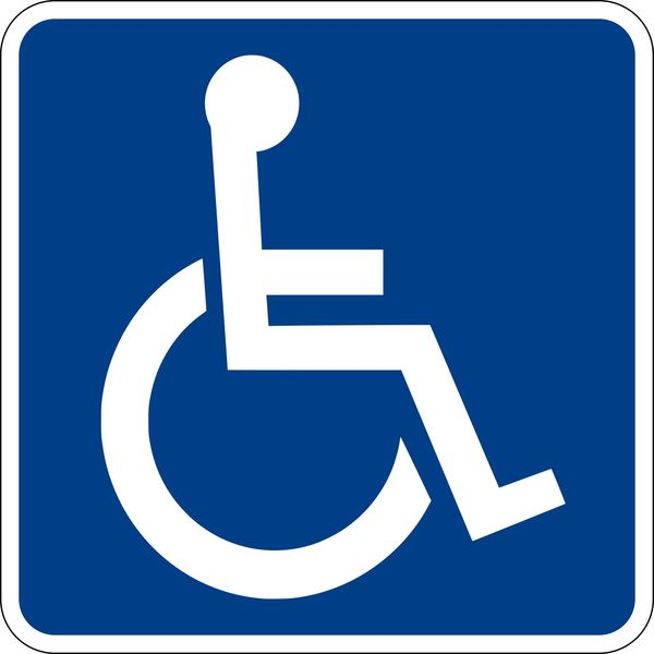 Disability Essay Examples