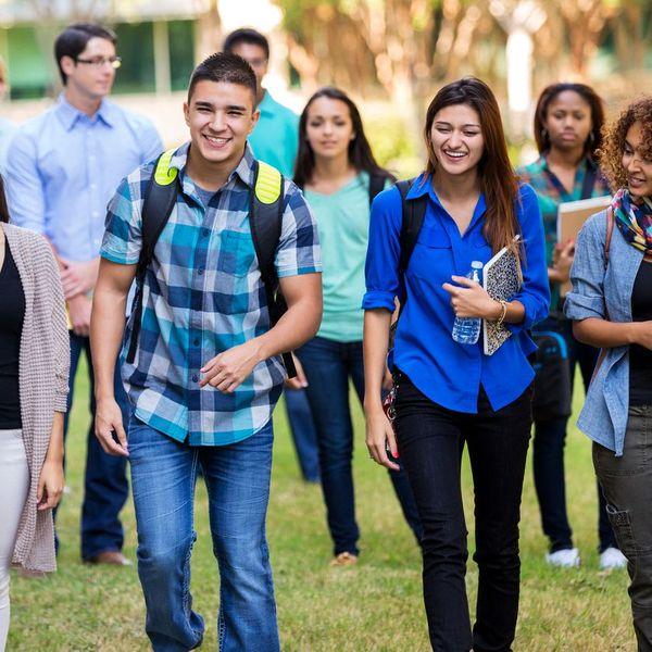 Diversity In College Essay Examples