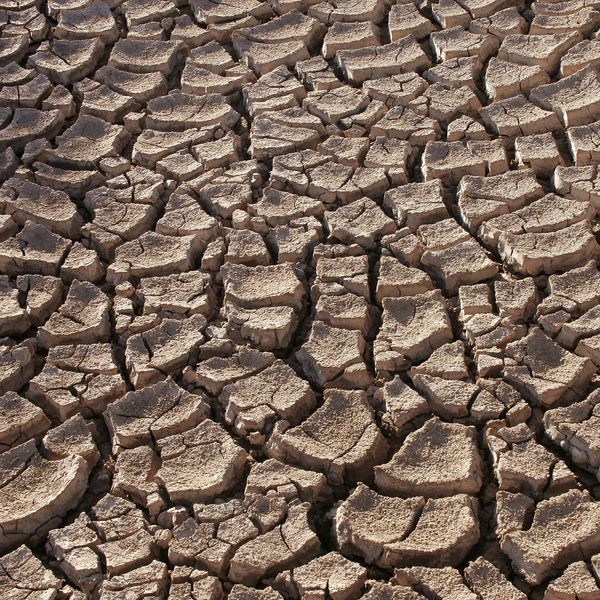 Drought Essay Examples
