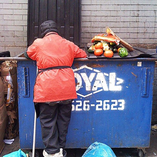 Dumpster Diving Essay Examples