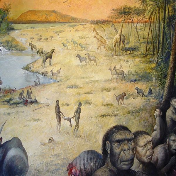 Early Human Life Essay Examples