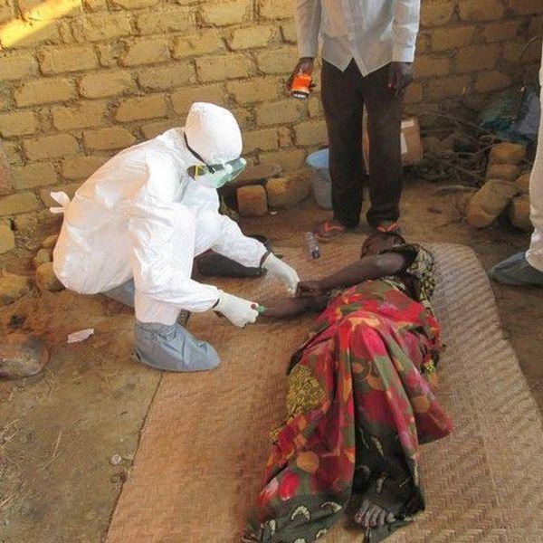 Ebola Essay Examples