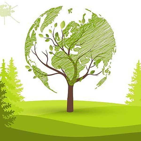 Eco Friendly Tourism Essay Examples