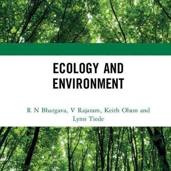 Ecology And Environment Essay Examples