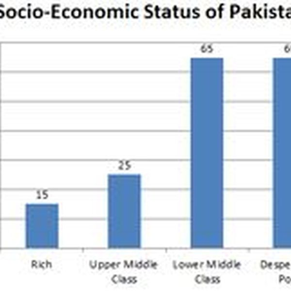 Economic Condition Of Pakistan Essay Examples