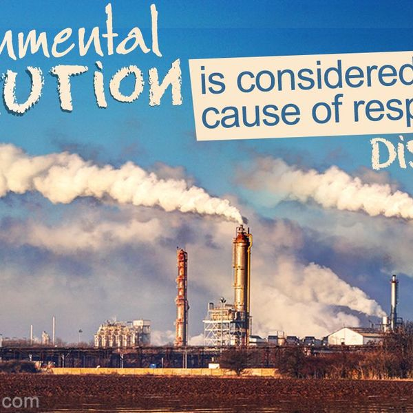 Effects Of Pollution On Environment Essay Examples