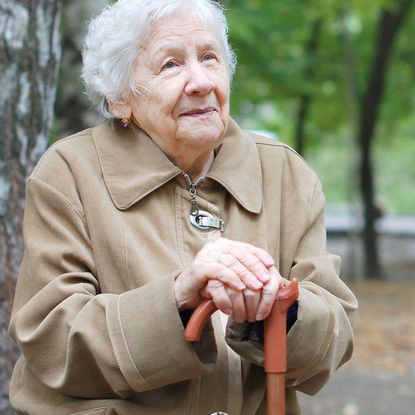 Elderly Person Essay Examples