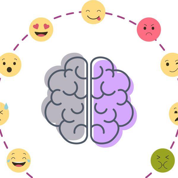 Emotion Essay Examples