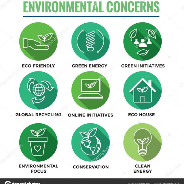 Environmental Concerns Essay Examples
