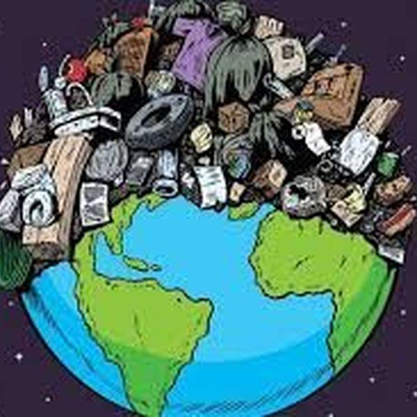 Environmental Crisis Essay Examples