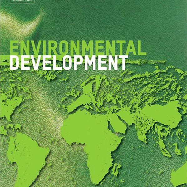 Environmental Development Essay Examples