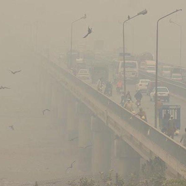 Environmental Pollution In Pakistan Essay Examples