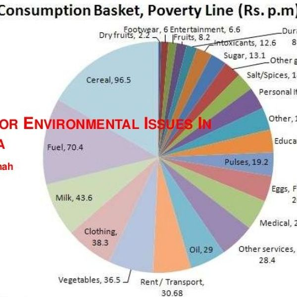 Environmental Problems In India Essay Examples