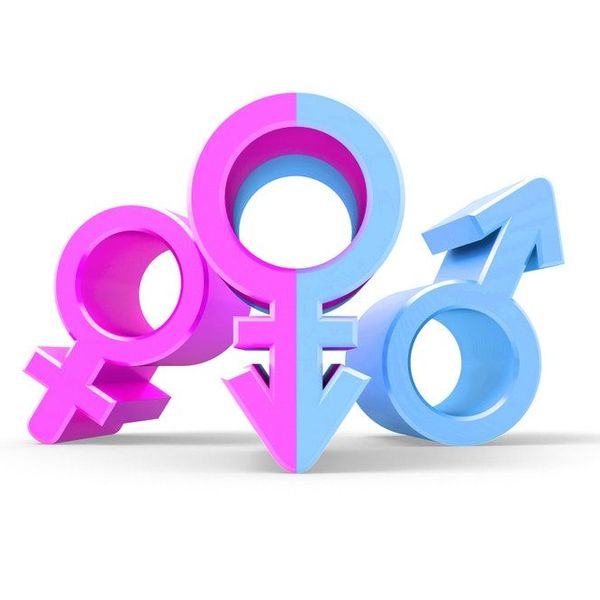 Equality Of Gender Essay Examples