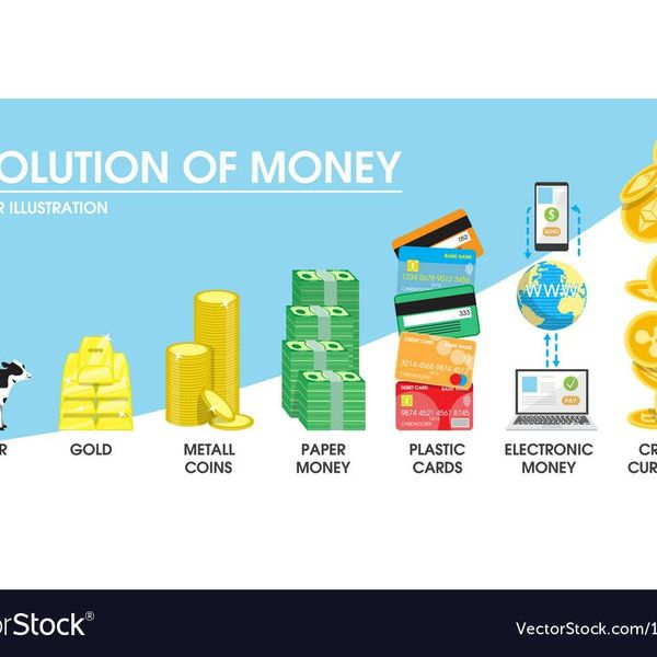 Evolution Of Money Essay Examples