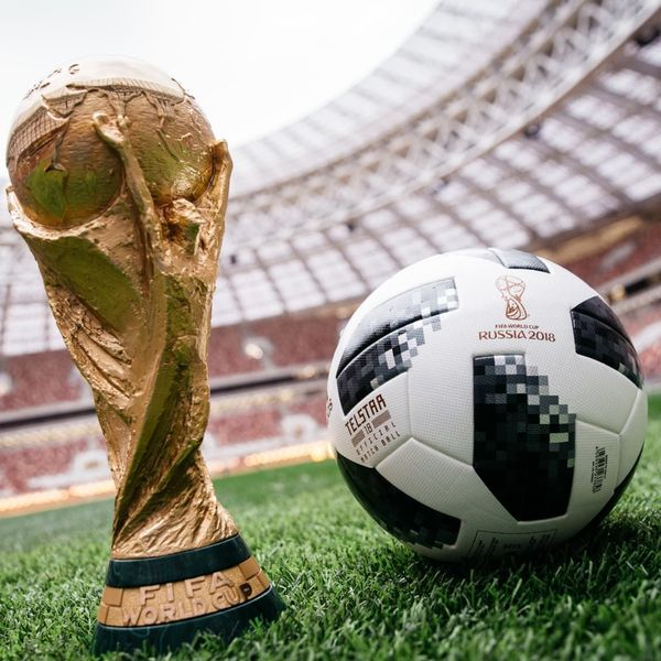 Fifa World Cup Essay Examples