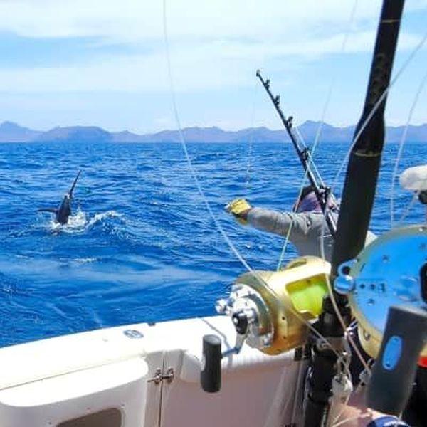 Fishing Trip Essay Examples