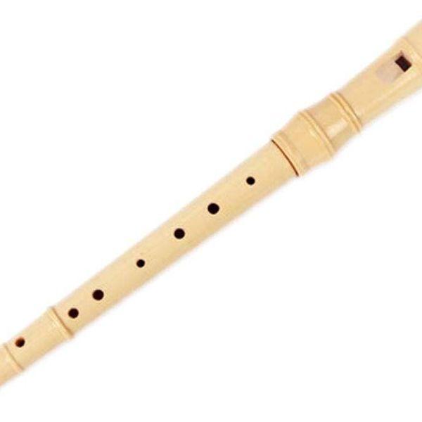 Flute Essay Examples