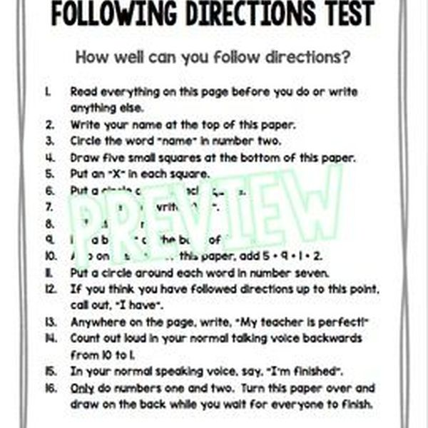 Following Directions Essay Examples