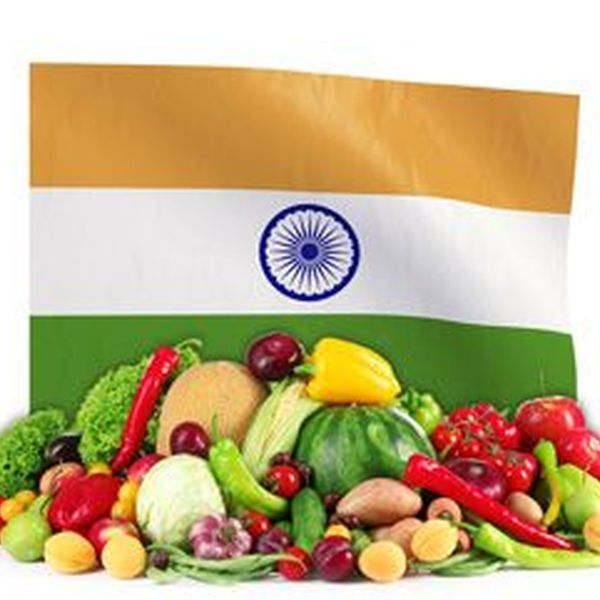 Food Safety In India Essay Examples