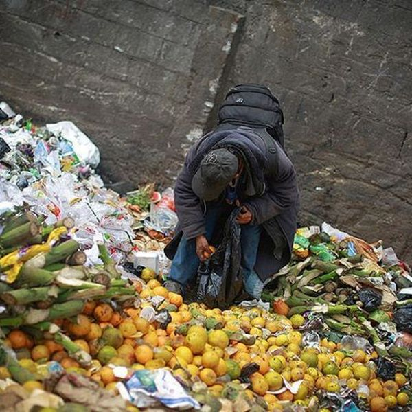 Food Wastage In India Essay Examples
