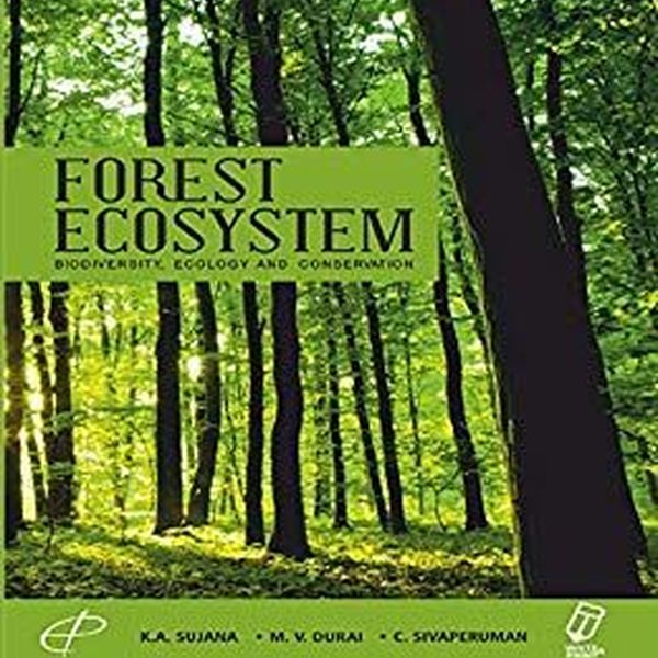 Forest Ecosystem Essay Examples