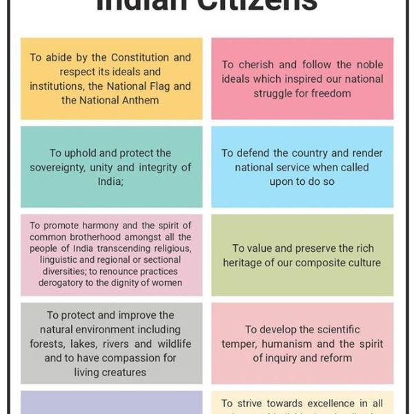 fundamental duties of a citizen Essay Examples