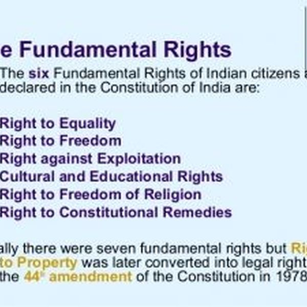Fundamental Rights Of Indian Citizen Essay Examples