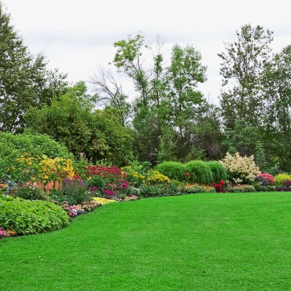Garden Essay Examples