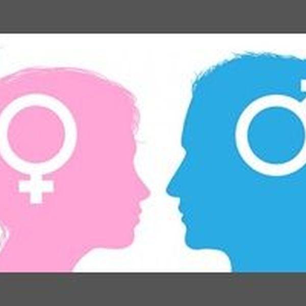 Gender Roles Essay Examples