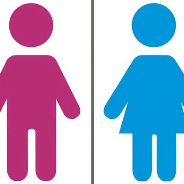Gender Essay Examples