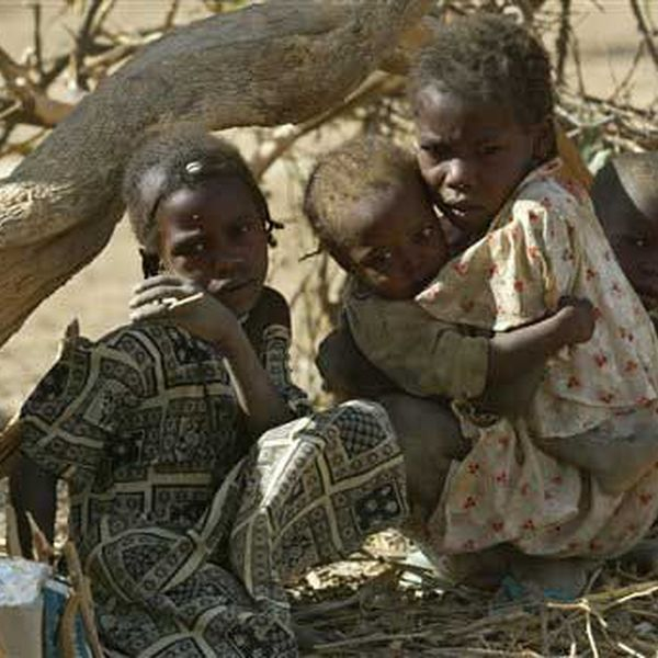 Genocide In Darfur Essay Examples