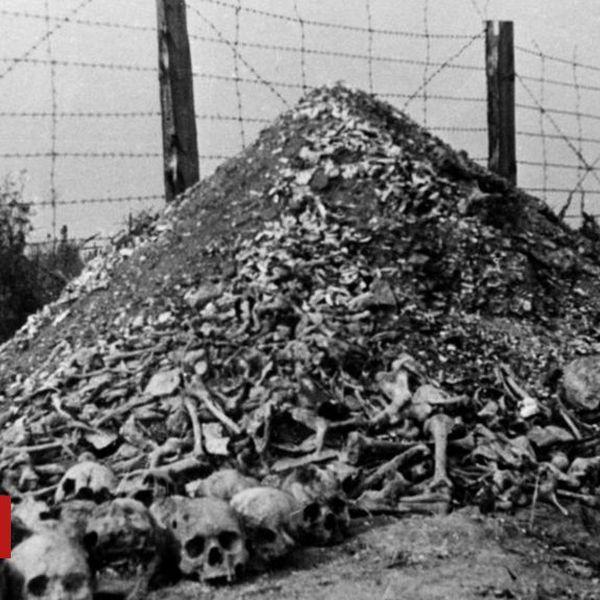 Genocide Essay Examples